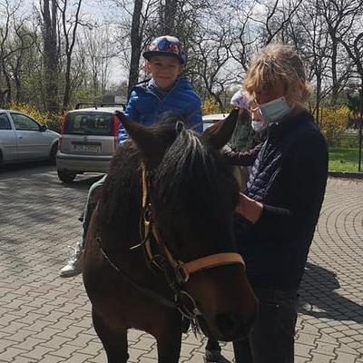 Przedszkolaki z koniem 29