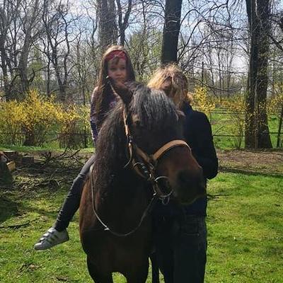 Przedszkolaki z koniem 27