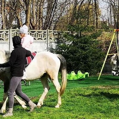 Przedszkolaki z koniem 22