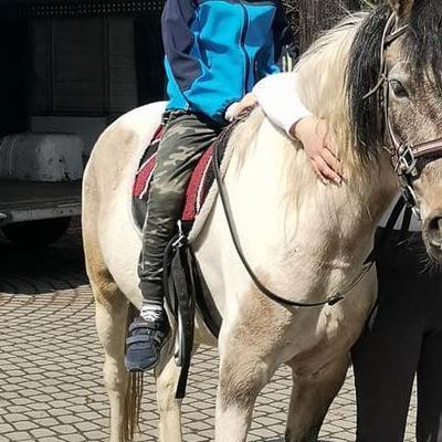 Przedszkolaki z koniem 21