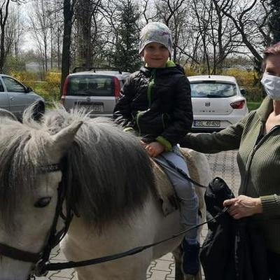 Przedszkolaki z koniem 16
