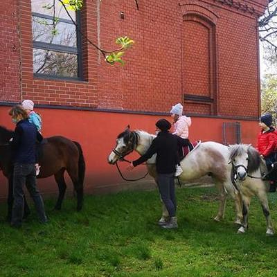 Przedszkolaki z koniem 14