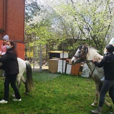 Przedszkolaki z koniem 32