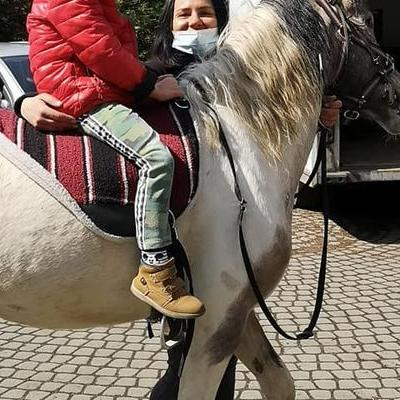 Przedszkolaki z koniem 33