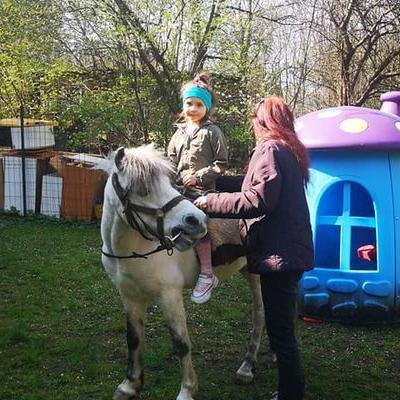 Przedszkolaki z koniem 9